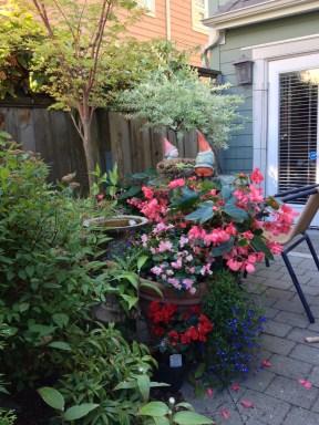 Christine's Garden 8