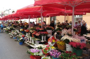 Flowers at Dolac Market