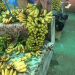 ボルネオのバナナ / Pasar