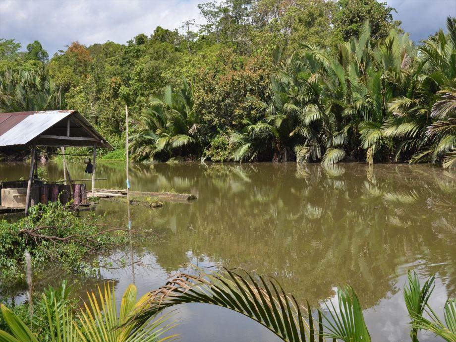 Dagat River