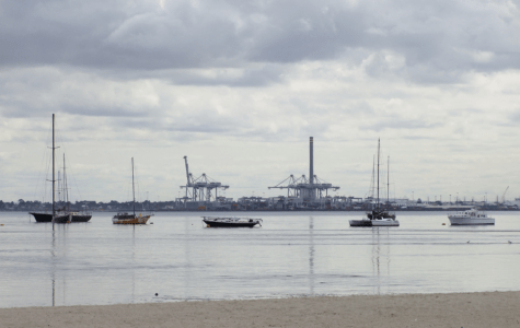 Albert Park: Inner-city affluence and diversity