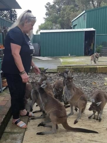 Roo Rescue founder Kim Grant rehabilitates orphaned joeys.