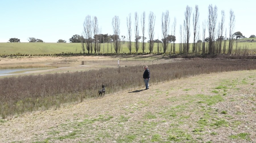 Boorowa farmer Daniel McGrath stands in his near-empty dam with his sheepdog Pearl.