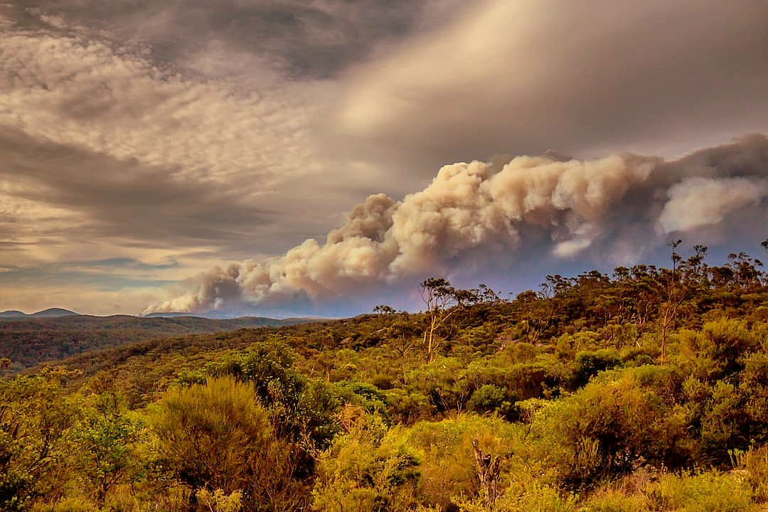 Gospers Mountain Fire 2019 - By Meganesia - Own work, CC BY-SA 4.0, https://commons.wikimedia.org/w/index.php?curid=85661298
