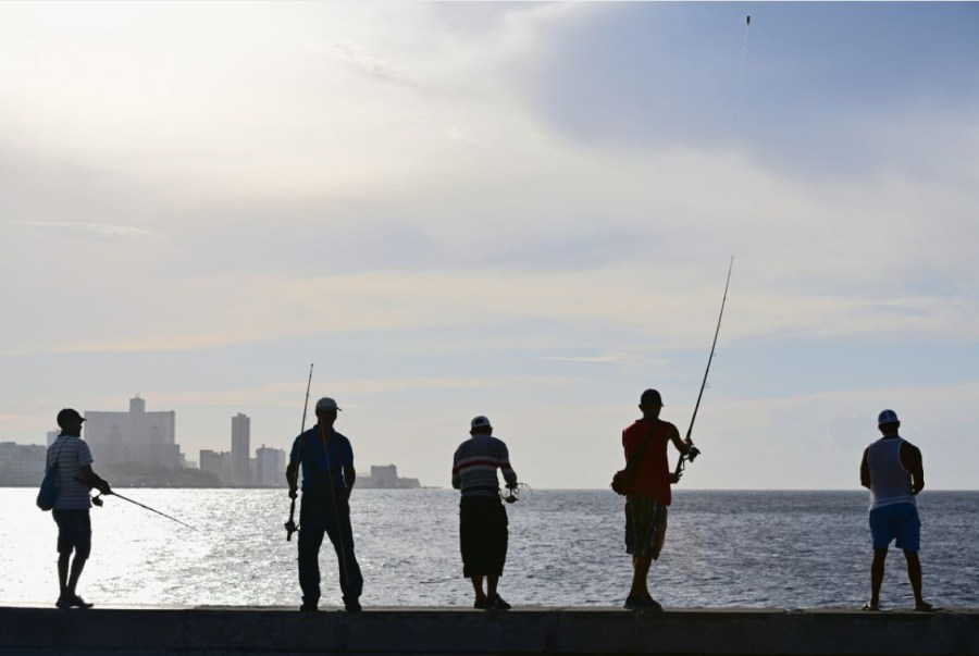 Commercial fishing bans have long divided fisherman across Queensland.