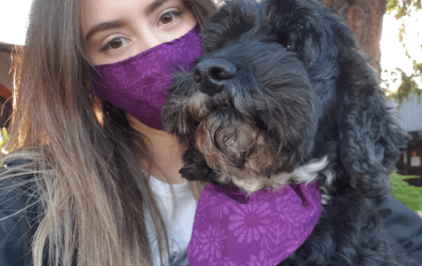 Angi Frentiu and her dog Radar wear Angi's matching mask and bandana set. Photo: Supplied by Angi Frentiu