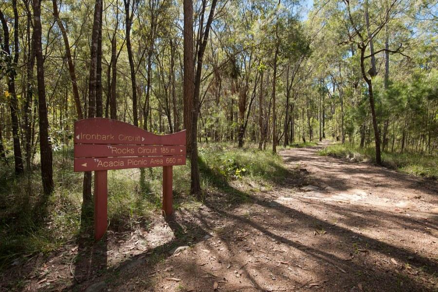 Karawatha Forest Park