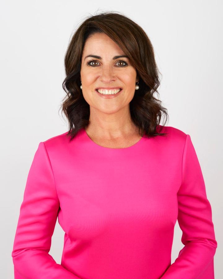 Third career move ... Former newsreader Jo Palmer marks a year in Tasmanian politics.