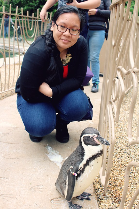 Up close with Paul the Penguin