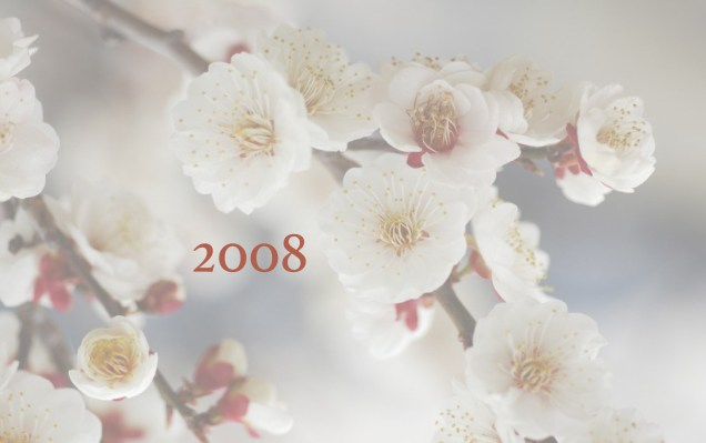 JIW 2008 2 Blossoms White.jpg