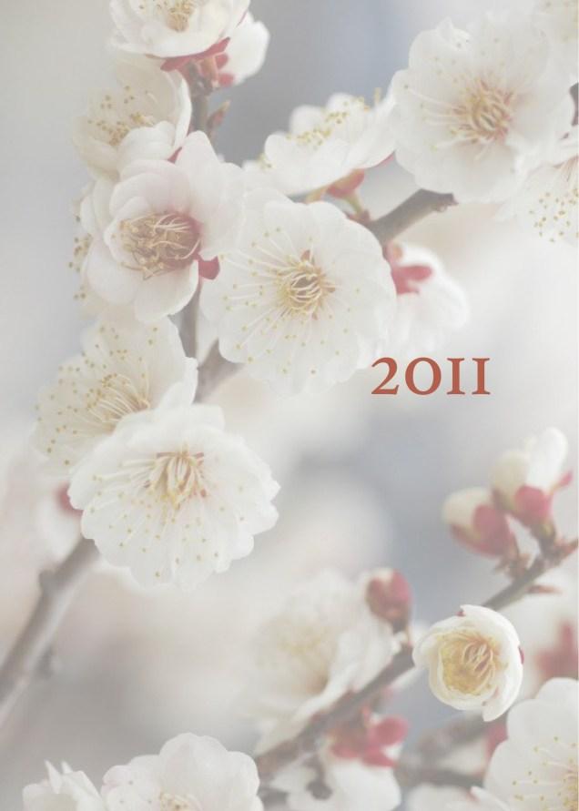 JIW 2011  Blossoms White