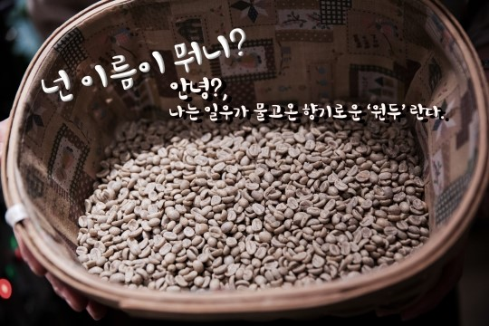 2014 11 13 Jung Il-woo makes coffee when he gets sentimental.  Starcast 2.jpg