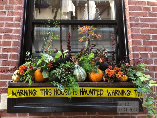 2018 10 31 Halloween at Beacon Hill in Boston, MA. By Fan 13 30