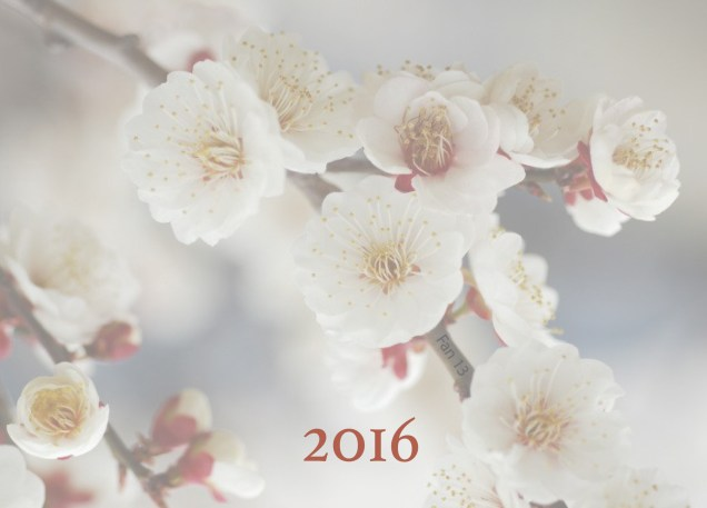 JIW 2016 Blossoms White