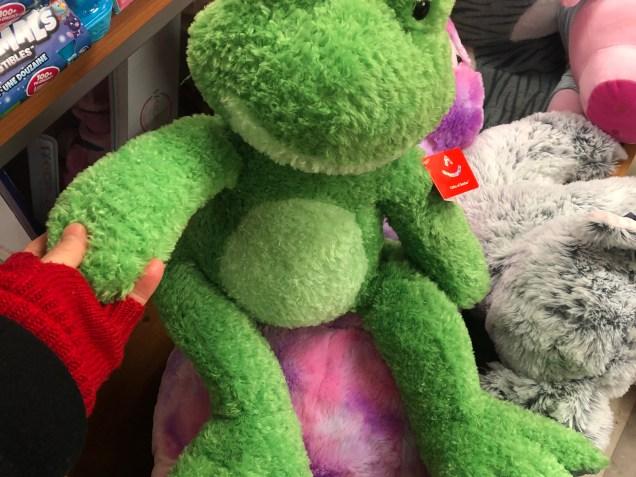 2019 Frog Encounters Fan 13 8.JPG