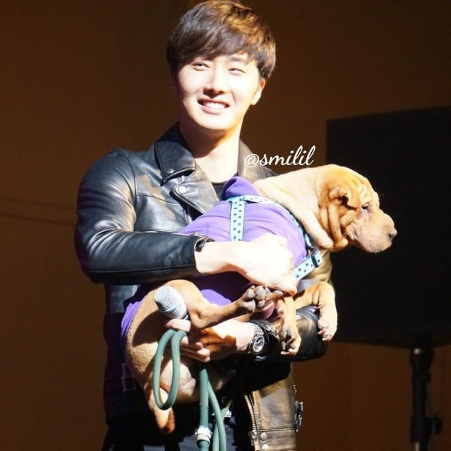 2014 11 22 Jung II-woo in his Fourth Korean Fan Meet. Cr. smilly_smilil 5