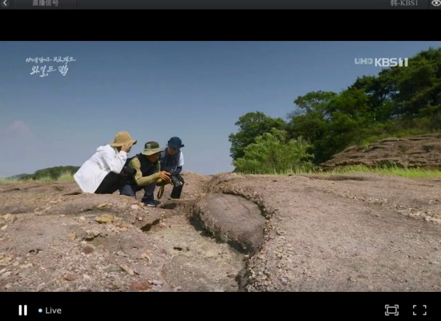 2019 10 3 Jung Il woo in Wild Map Documentary. Episode 1.8