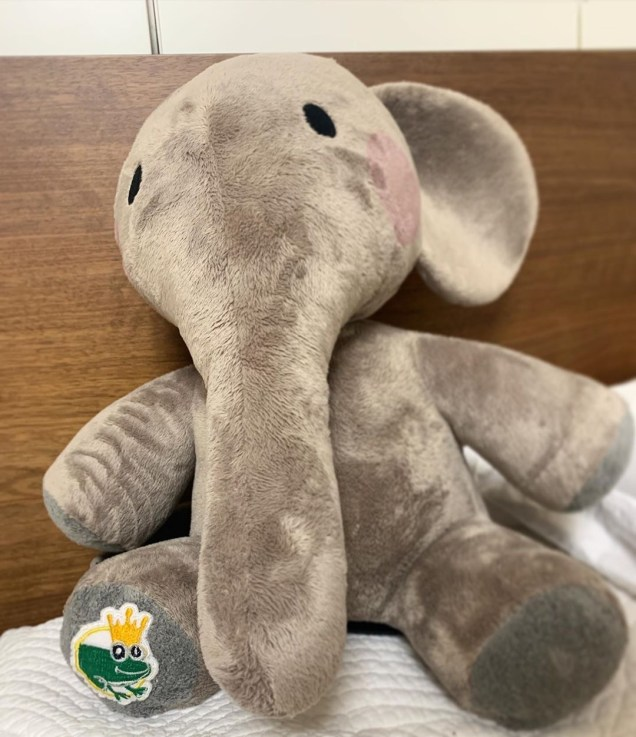 2019 11 Anthony the Elephant for The Play The Elephant Song.JPG