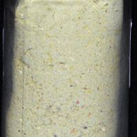 springtail food