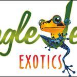 2016 spring reptile expo