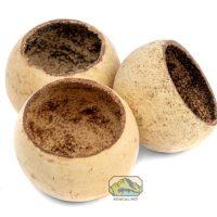 NewCal Bell Cups