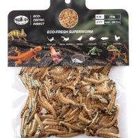 ProBugs Eco Fresh Superworms 150gm approx 290 worms