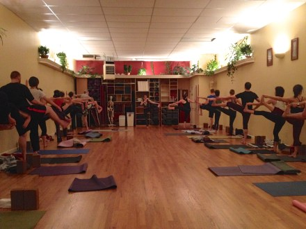 Teaching an Introduction to Ashtanga Course at Yoga Workshop in 2014. Photo by Melissa Fry