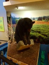 In der Ausstellung im Visitor Center