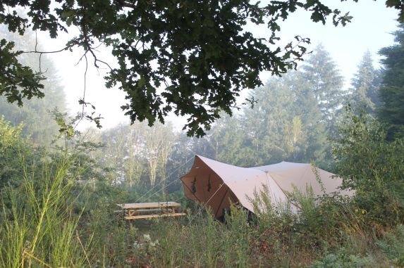 Tent in de mistige morgen