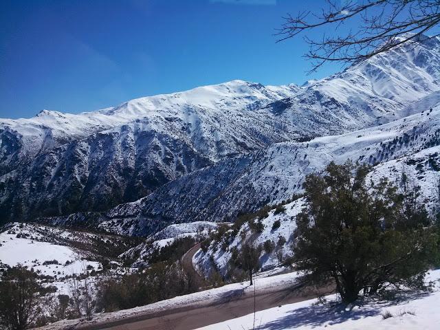 Projeto Fotográfico: Inverno