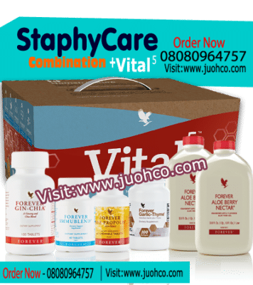 StaphyCur Combination Vital5 Therapy products image banner450x400 1 356x400 - Natural Treatment for MRSA | Staphylococcus Aureus Infection