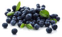 blueberries-on-white