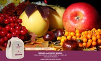 aloe berry nectar benefit