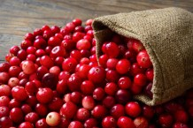 Image result for cranberry