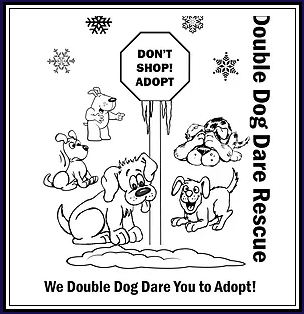 Double Dog Dare Rescue