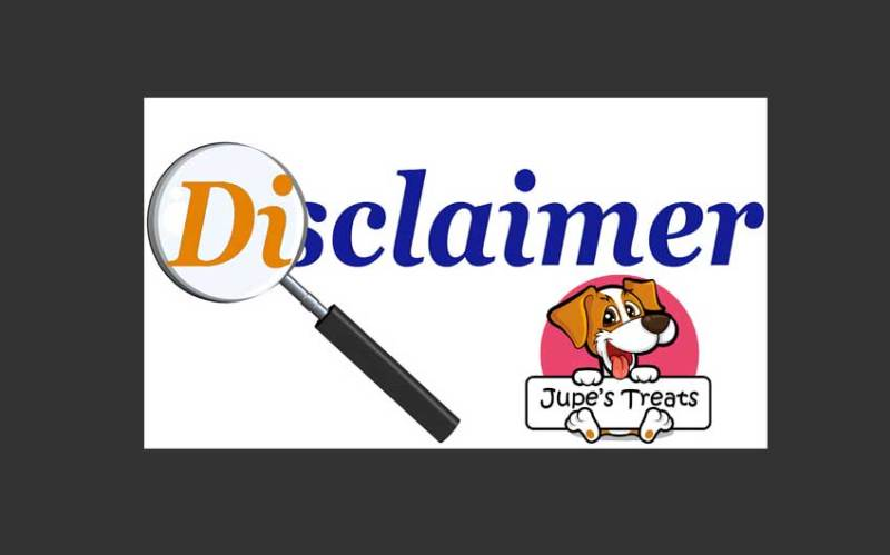 DISCLAIMER AND TERMS OF USE AGREEMENT