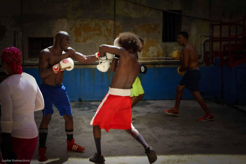 A Cuban Passion
