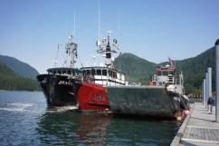 Rafted tenders in Taku Harbor