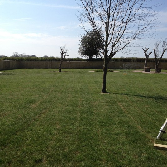 jupp-landscapes-turfing-after
