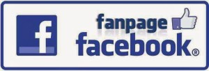 FB FansPage
