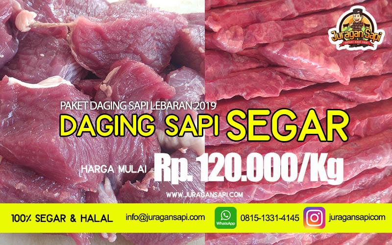 promo daging sapisegar 2019