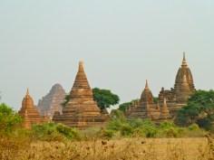 Dhammayanyi looming behind endless stupas