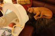 Tala and Wilfred sleeping
