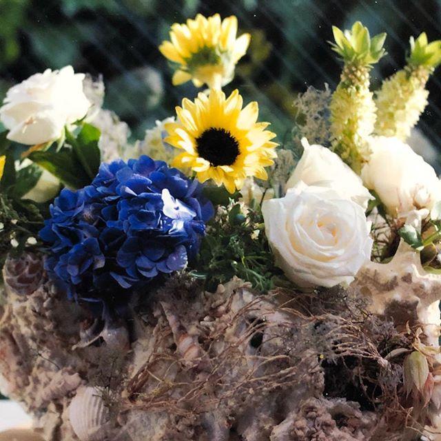 海の日のアレンジ。ギプスを器にして、花と一体化したアレンジ。貝殻を器に埋め込んで砂もつかっています。**砂浜、大地、空のイメージです。*Julia professeur sanae*#アトリエジュリア #フラワーアレンジメント#花#花すきな人と繋がりたい #お稽古#趣味をたのしむ #海の日#アレンジメント#海#貝殻#florist #flower