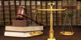 STJ diz ser possível a liberação de veículo usado em crime ambiental ao dono na condição de fiel depositário