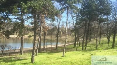 De Paste, Primaria invita craiovenii la picnic