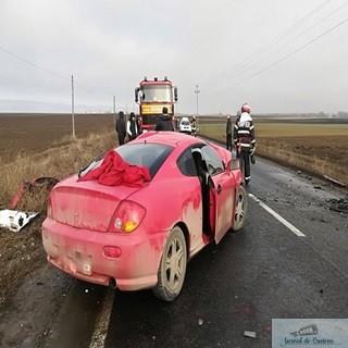 Accident!A intrat cu masina intr-o turma de oi. 1