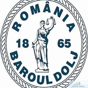 Baroul Dolj : Conferinta de drept penal al afacerilor la Craiova