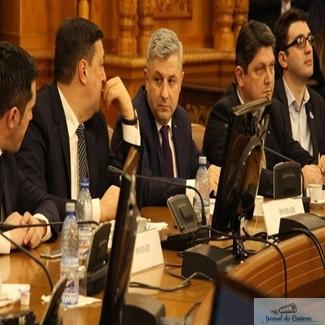 Comisia Iordache da piept cu reprezentantii Comisiei de la Venetia 1