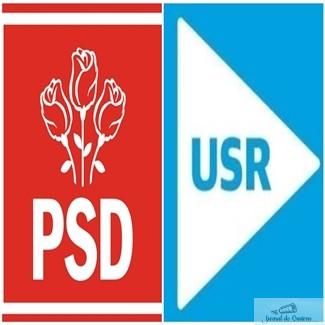Ana Ciceala - USR Bucuresti are legaturi cu PSD Dolj ! Familia incaseaza bani frumosi de la stat ! 1